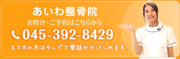 tel:045-392-8429